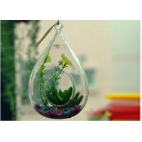 Wholesale Hanging Teardrop Glass Terrarium , Hanging Glass Teardrop Candle Holders from china suppliers