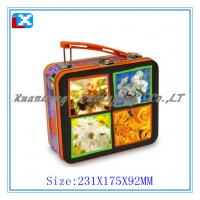Wholesale rectangular metal lunch tin box with plastic handle/with lock from china suppliers