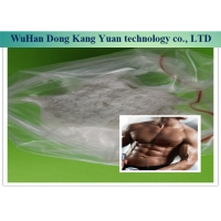 Wholesale 99% Halotestin Steroid Hormone Powder 76-43-7 For Get Muscle from china suppliers