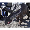 Interactive Handmade Dinosaur Yard Ornament For Theme Park Equipment for sale