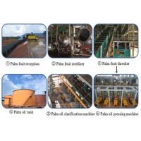 Wholesale 1-100tpd palm oil processing plant from china suppliers
