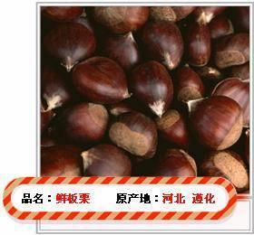 China Fresh Chestnut on sale
