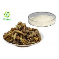 Wholesale CAS: 446-72-0 Natural Fructus Sophorae Extract Genistein Powder 98% Manufacturer from china suppliers