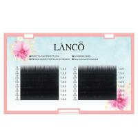 Wholesale Individual Volumizing Lash Extensions Camellia 0.05mm Fast Blooming In One Second from china suppliers