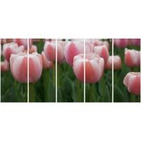 Wholesale 5 panel panoramic canvas prints with pinkwhite tulips from china suppliers