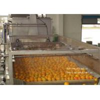 Wholesale Gable Top Package For 6000L / H Concentrated Fruit Juice Orange Processing Line from china suppliers