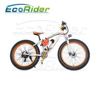 China Electrostatic Painting Process folding Electric Bicycle Aluminium Alloy 36V 250W on sale