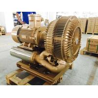 Wholesale 22kw Explosion Proof Vacuum Pump High Pressure With SIEMENS ATEX Motor from china suppliers