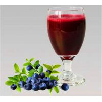 Natual GMO Free 25% Anthocyanosides Violet Fine Powder Vaccinium Myrtillus Extract for sale