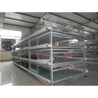 China Baby ChicKen Cage for sale