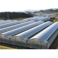 China Poly Plastic Greenhouse Film Moisture Proof , Blow Molding Processing Type on sale