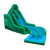 Wholesale Emerald Green Frog Fun Water Slides , Inflatable Double Rush Slip Wet Slide from china suppliers
