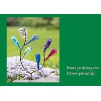Wholesale Decorative Garden Plant Accessories , Mini Steel Garden Bottle Tree from china suppliers