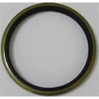 Wholesale NOK Wear Ring WR 25 25*21*8 GW0246P0 from china suppliers