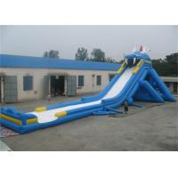Wholesale Outdoor Adult Giant Inflatable Slide, Massive Inflatable Slide For Amusement Park from china suppliers