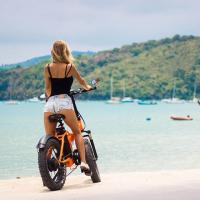 Buy cheap 20 Inch 48v 500w Bafang Motor Folding Fat Tire Electric Bike With LCD display from wholesalers