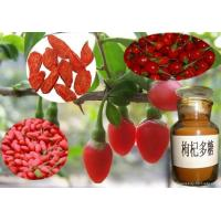 Buy cheap Wholesale Goji Fruit Extract Powder from wholesalers