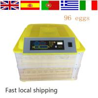 Wholesale 2016 newest design mini quail egg incubator On promotion HT-96 from china suppliers