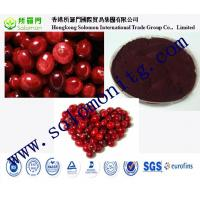 Wholesale high quality cranberry fruit powder juice powder Cranberry juice powder Cranberry extract from china suppliers