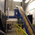 Wood conveyor belt