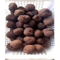 Wholesale Wild Black Tuber, Black Truffle, dried truffle tuber indicum from china suppliers