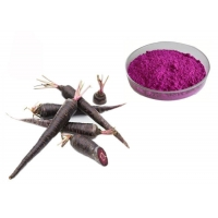 China Organic Black Carrot Vegetable Extract Powder For Natural Pigment on sale