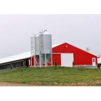 China Pre Built Commercial Steel Structure Poultry House Chicken Rearing Structures for sale