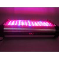 China cidly pt 150w programmable coral reef led lighting for aquarium saltwater fish on sale