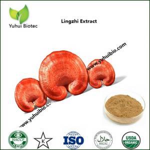 China reishi mushroom extract powder,red reishi extract,red reishi mushroom extract on sale