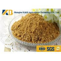Wholesale Purity Easy Absorb Fish Powder Fertilizer / Fish Meal Feed For Shrimp from china suppliers