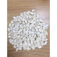 Wholesale Snow White Pumpkin Seed from china suppliers