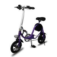 China Lithium Battery Lightweight Electric Folding Bike Aluminium Alloy With USB Port for sale
