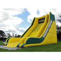 Wholesale Outdoor Commercial Inflatable Slide, Exciting Giant Inflatable Dry Slide For Adult from china suppliers