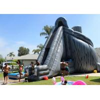 Wholesale Giant Inflatable Slide 33ft High Hurricane Water Slide Inflatables For Adults from china suppliers