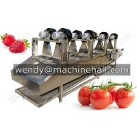 fruit washing fried food deoling machine with best price