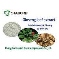 Wholesale 20% 80% ginsenoside Antioxidant Dietary Supplement Material , Organic Ginseng Leaf Extract from china suppliers