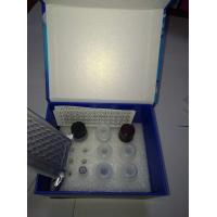Wholesale Bovine Growth Hormone (GH) ELISA Kit    96T/48T  Test kit from china suppliers