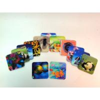 Wholesale Lenticular placemat from china suppliers
