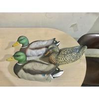 Duck hunting decoy with popular painting design floating mallard duck floatie decoy drake and hen