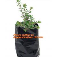 Wholesale Poly Planter, Grow Bag, garden bags, grow bags, hanging plant bags, planters, Plastic plan from china suppliers