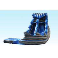 Wholesale Monster Inflatable Big Water Slides For Kids , Water Inflatable Slide Blue And Gray Color from china suppliers
