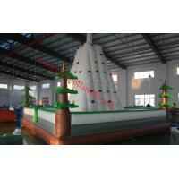 Wholesale inflatable climbing wall inflatable rock climbing wall climbing wall inflatable climbing from china suppliers