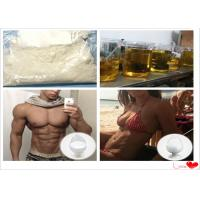 Real Testosterone Decanoate Injectable Anabolic Steroids Yellow Oil DECA 5721-91-5
