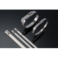 Buy cheap Heavy Duty Stainless Steel Cable Ties Self Locking 10 Inch Zip Ties 50pcs / Pkt from wholesalers