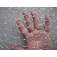 Wholesale Hot Dipped Galvanized Hexagonal Wire Netting , Silver Ornamental Wire Fence from china suppliers