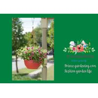Wholesale Self Watering Hanging Flower Baskets / Hanging Baskets For Plants from china suppliers