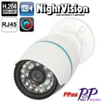 China Business Surveillance Systems P2P IP66 IP Camera 1.3 Megapixel on sale