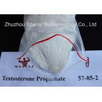 Wholesale Anabolic Strongest Testosterone Steroid Propionate CAS 57-85-2 for Bodybuilding from china suppliers
