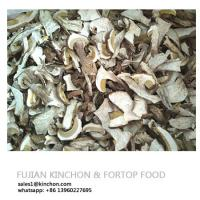 China King Bolete Porcini Mushroom boletus edulis Wholesale Price on sale