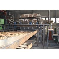 Wholesale Rotary Type Paper Egg Tray Production Line Big Capacity 1500-5000pcs/h from china suppliers